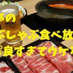 梅田・北新地でしゃぶしゃぶ食べ飲み放題3,500円!「どん亭」がコスパ炸裂でウケる!