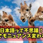 【日本語の不思議!】同じ意味、同義語なのにニュアンスや伝わり方が微妙に違う言葉を勝手に検証してみた!