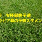 11月15日【日本 VS サウジアラビア】予想先発スタメンはコレに決まり!本田はベンチスタートだ!