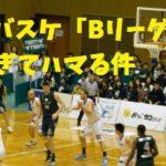 プロバスケットボール「Bリーグ」を見に行ってみた!試合展開がスピーディでハマる件!