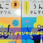 例文がマジウケル!今話題の「うんこ漢字ドリル」を小学生の子供にやらせてみた!