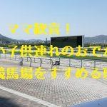 休日は阪神競馬場へファミリーでGO!広くて、遊び場満載で超オススメな件!