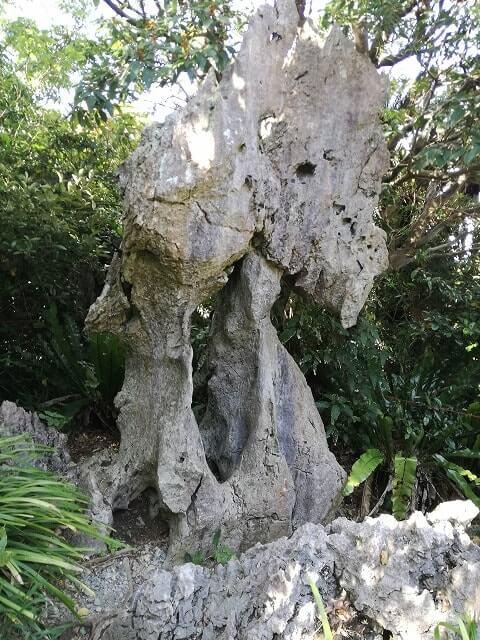 大石林山の骨盤石