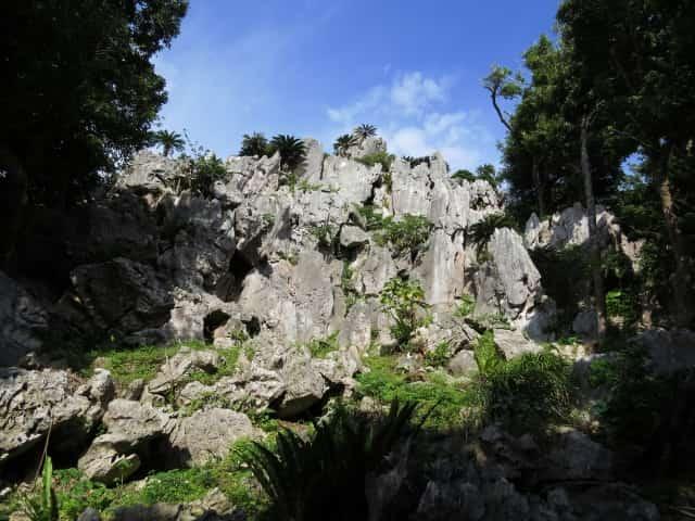 沖縄やんばるの観光スポット!「大石林山」