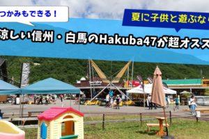 信州・長野県のHakuba47