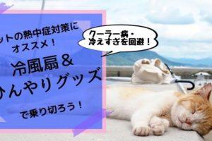 【ペットの熱中症対策】犬・猫も冷風扇&ひんやり冷涼グッズで夏の暑さを乗り切ろう!